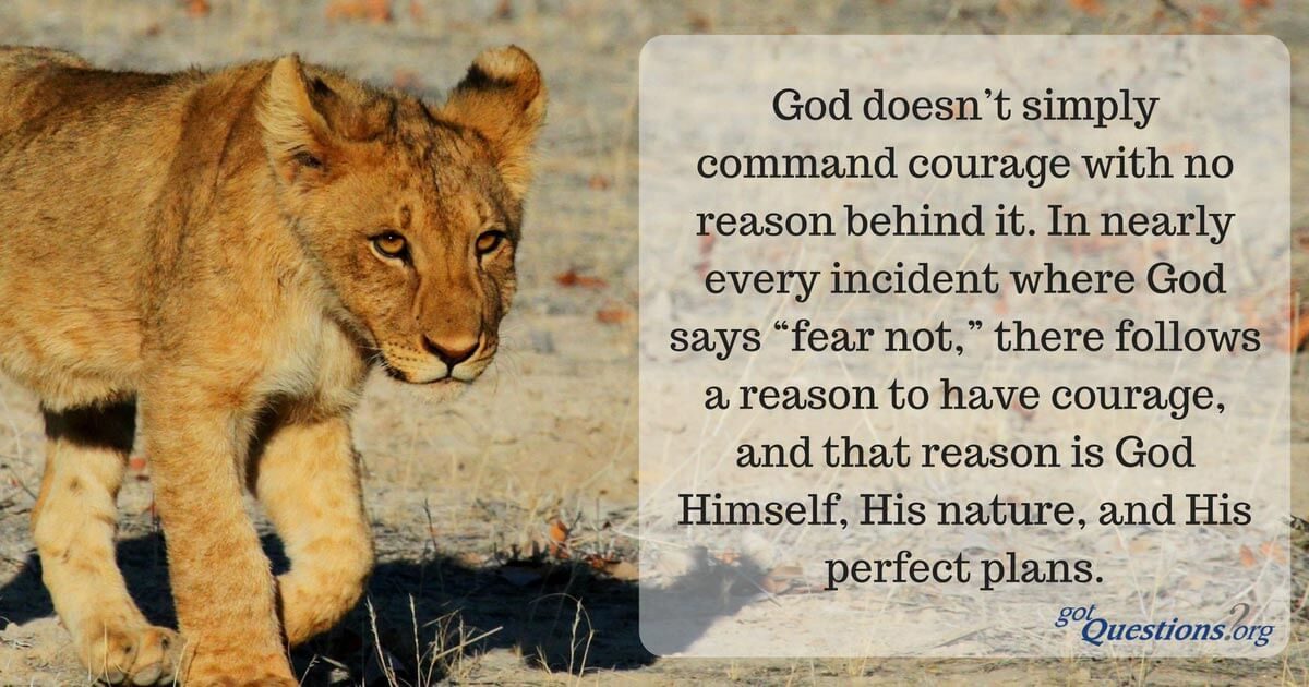 What Does The Bible Say About Courage