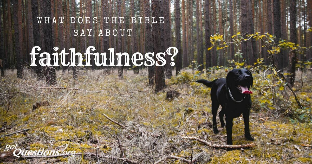 What Does The Bible Say About Faithfulness