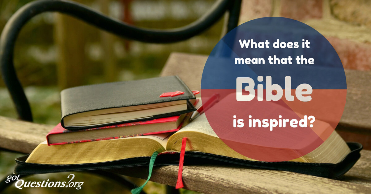 what does the bible mean to you How does reading the bible make you feel i have experienced a wide range of reactions, emotions and feelings from reading god's word great questions mich, what does the bible mean to you as it has already been said, the bible is the living word of god, by the enlightenment of the holy spirit.