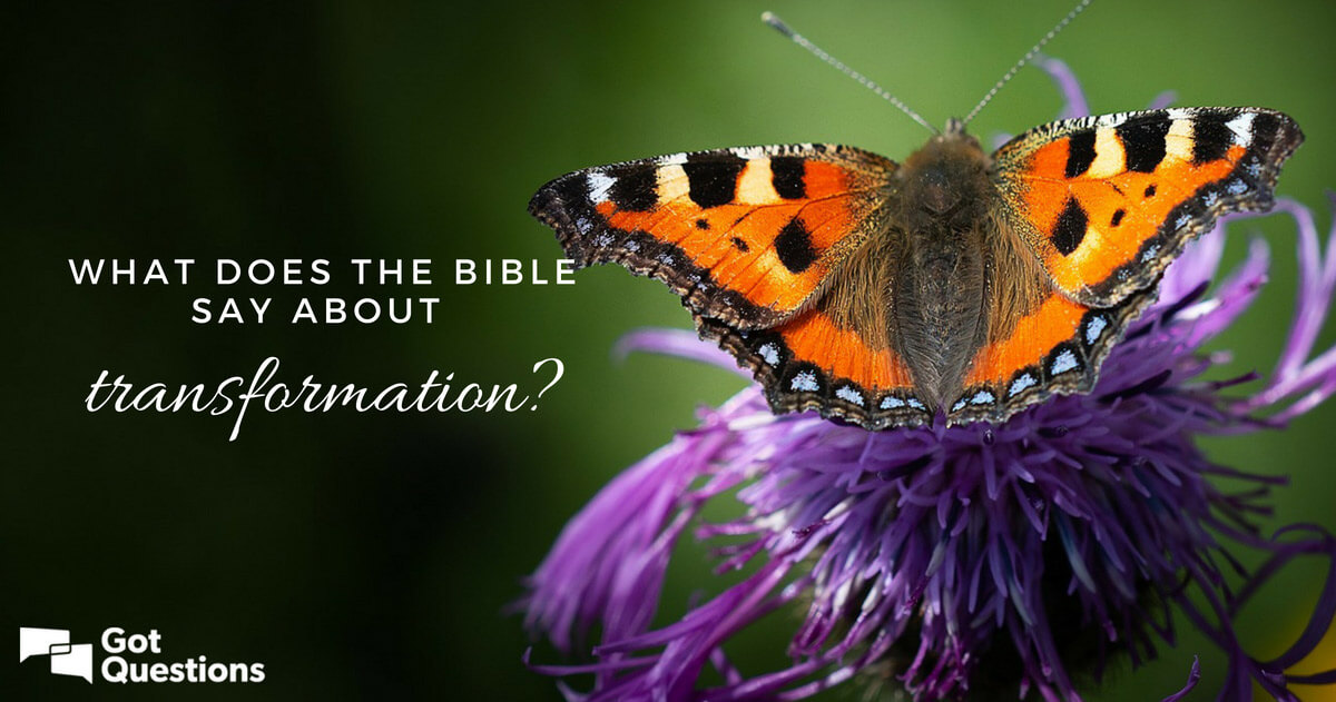 What does the Bible say about transformation? | GotQuestions org