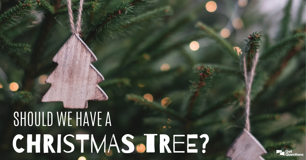 Have A Christmas.Should We Have A Christmas Tree Gotquestions Org
