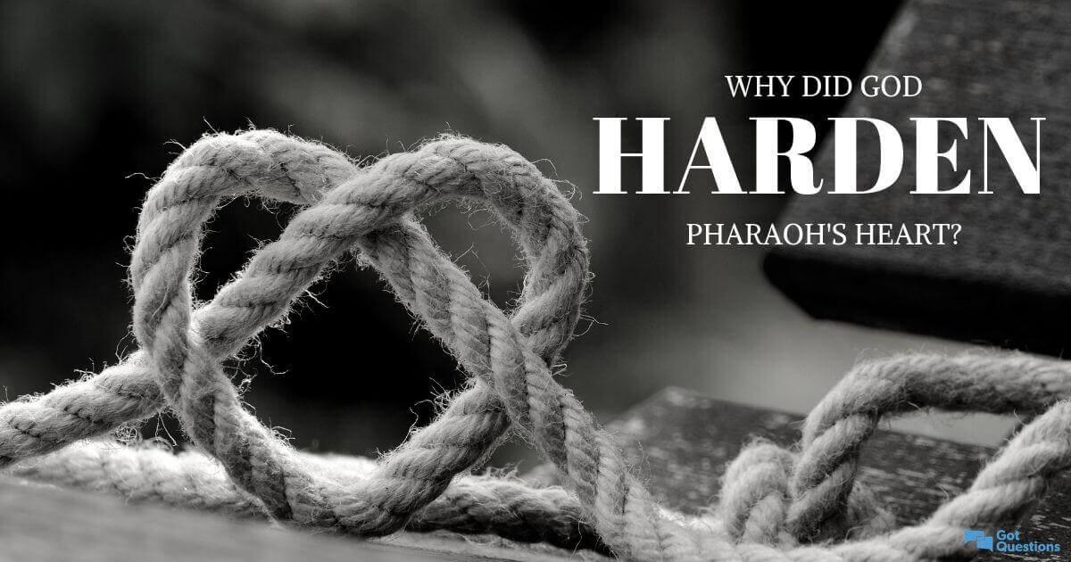 Why did God harden Pharaoh's heart? | GotQuestions org