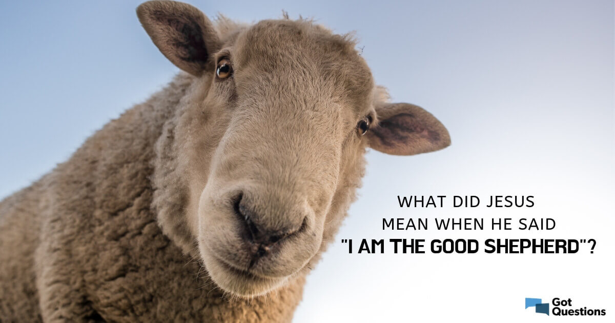 """What did Jesus mean when He said, """"I am the good Shepherd?"""" 