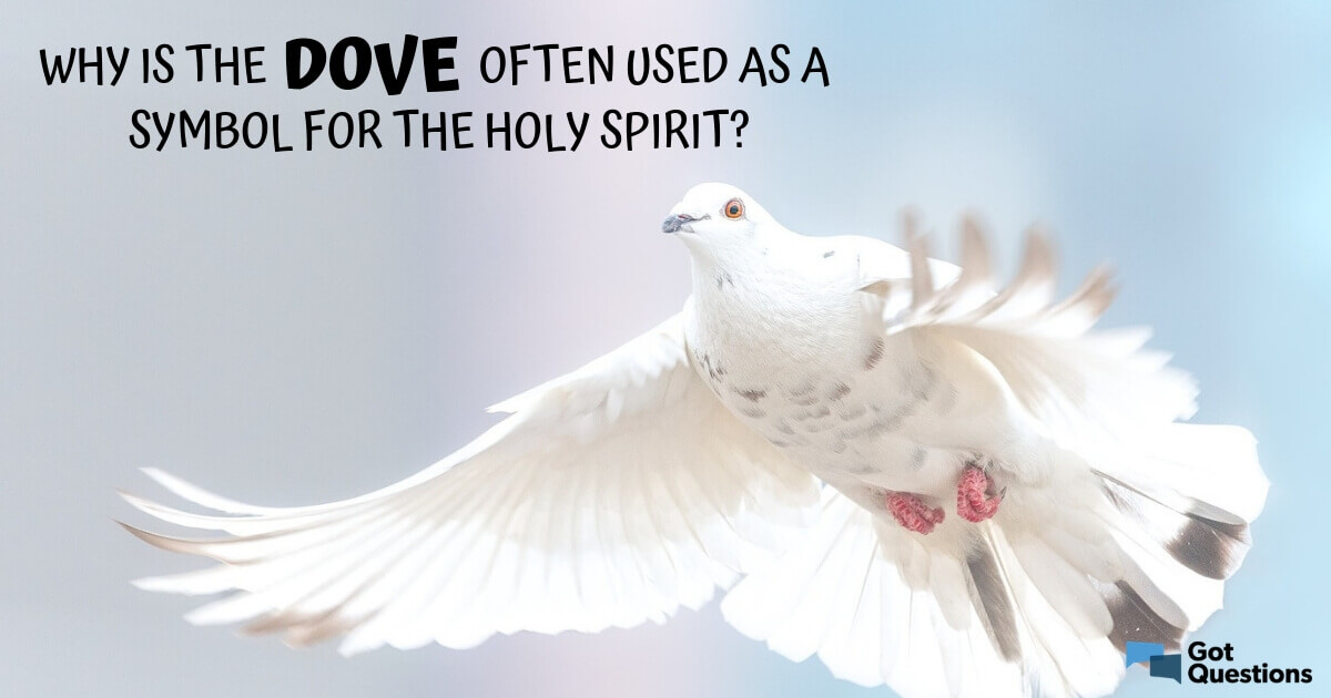 Why Is The Dove Often Used As A Symbol For The Holy Spirit Gotquestions Org