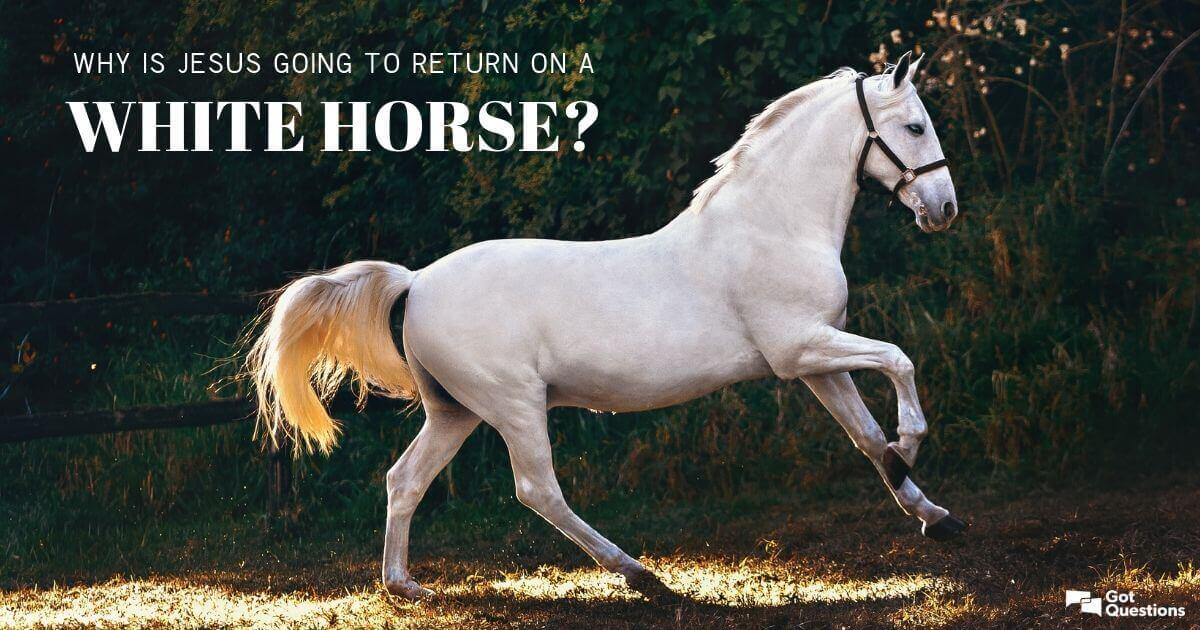 Why Is Jesus Going To Return On A White Horse Gotquestions Org