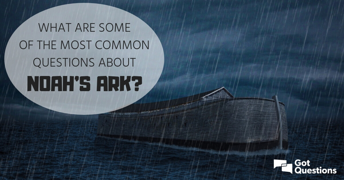 What Are Some Of The Most Common Questions About Noah S Ark