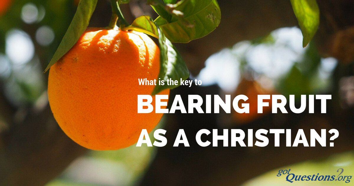 What Is The Key To Bearing Fruit As A Christian