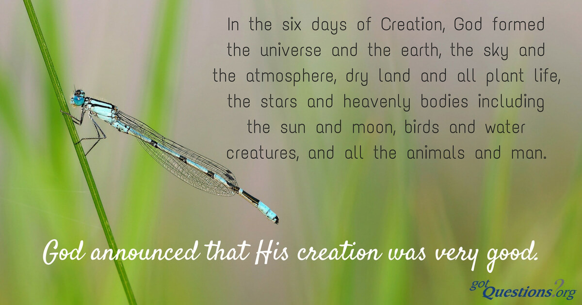 What Is The Biblical Creation Story