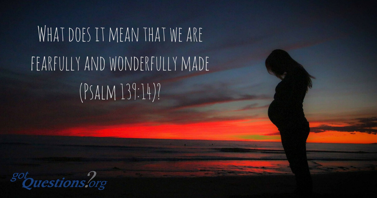 What does it mean that we are fearfully and wonderfully made