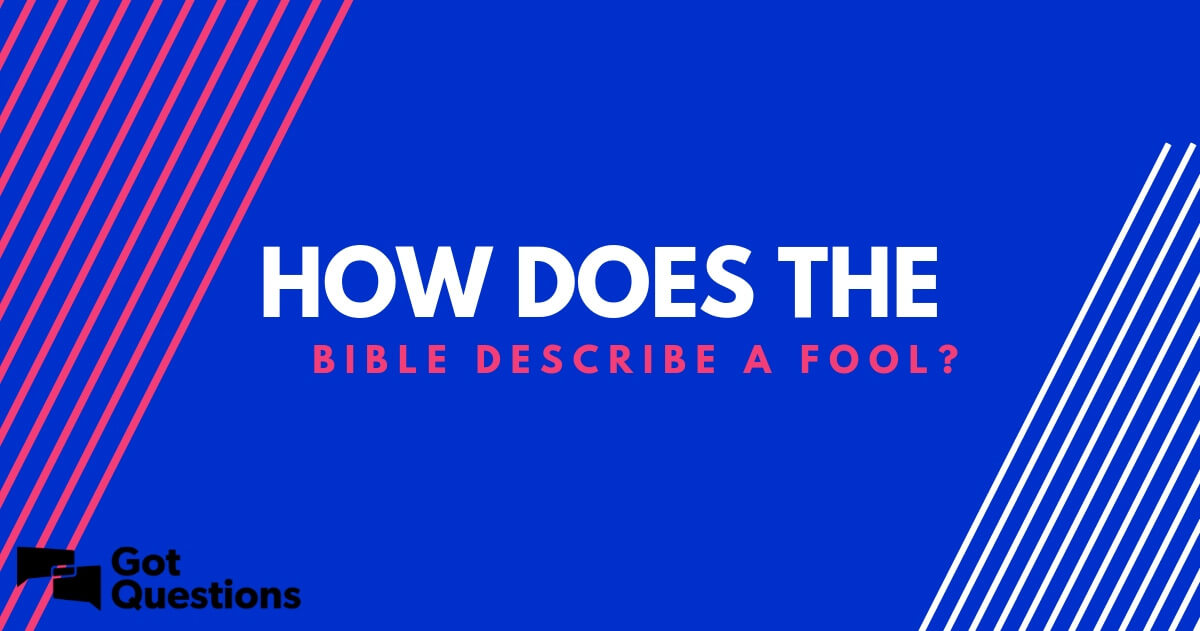 How does the Bible describe a fool? | GotQuestions org