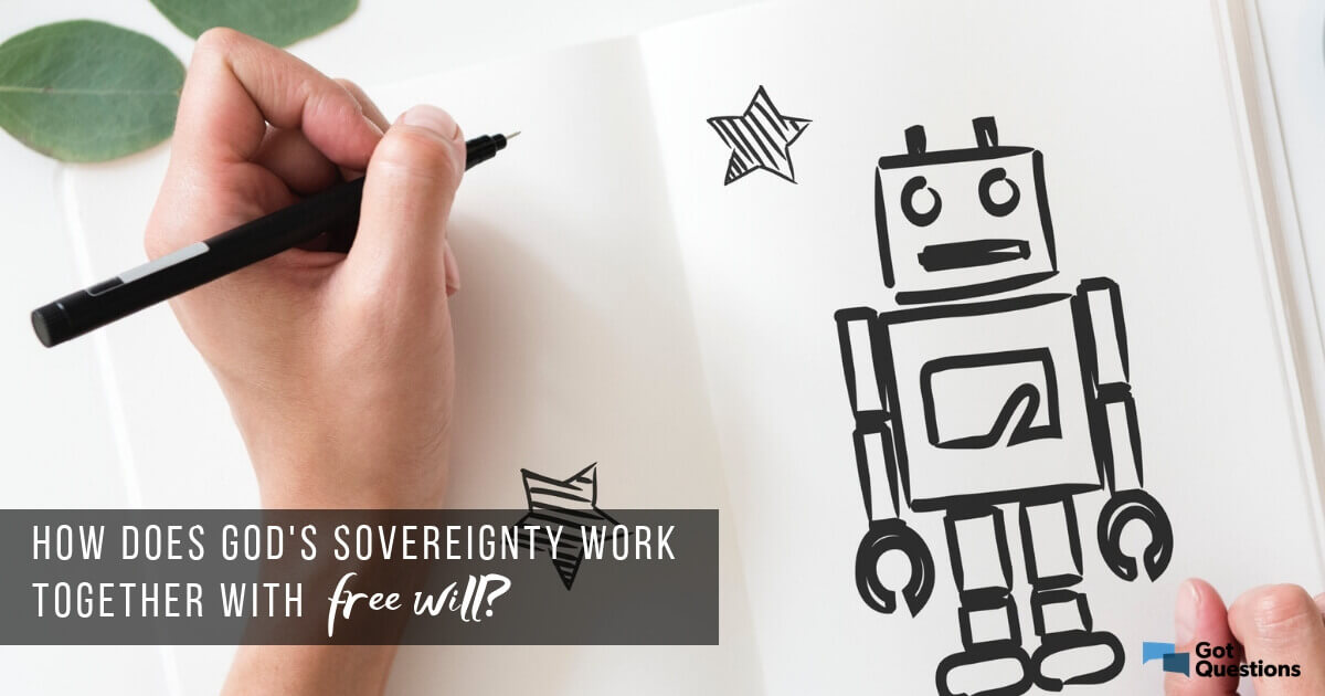 How does God's sovereignty work together with free will