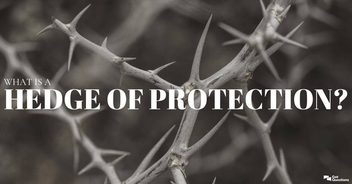 What is a hedge of protection? | GotQuestions org