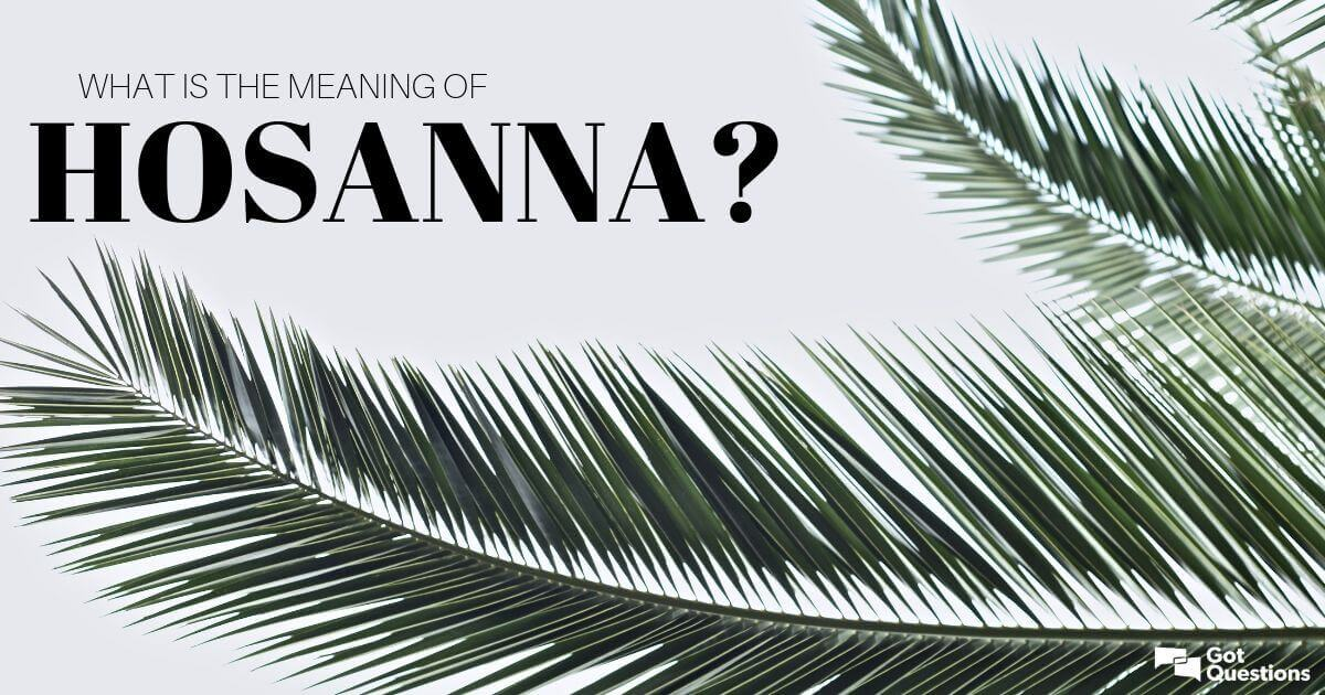 What is the meaning of hosanna? | GotQuestions org