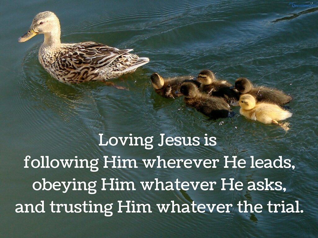 Jesus Inspirational Quotes What Does It Mean To Love Jesus