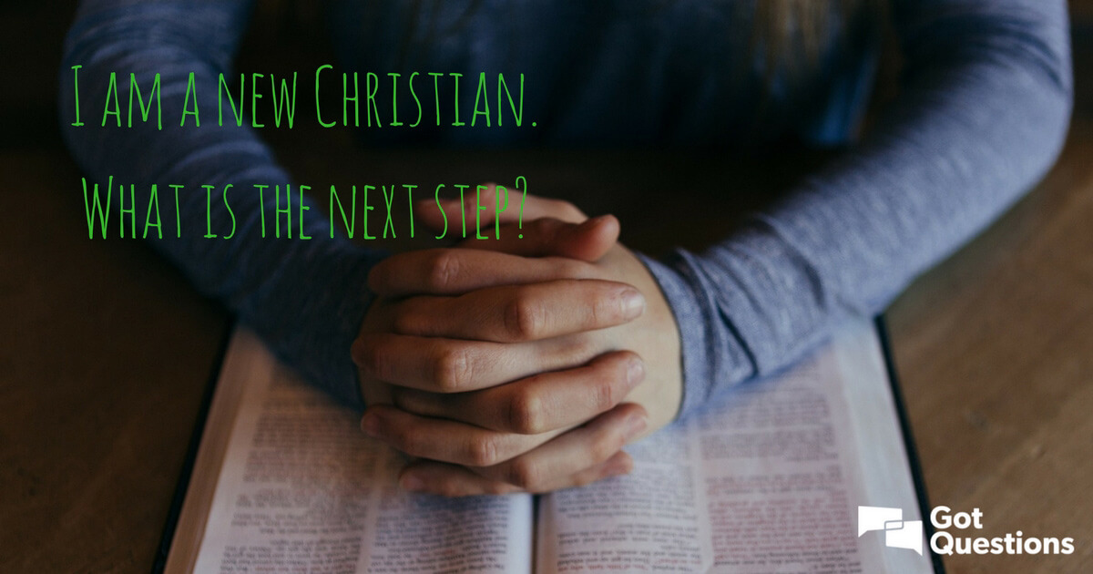 I Am A New Christian What Is The Next Step