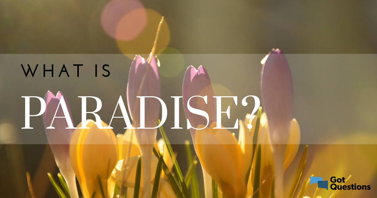 What is paradise? Is paradise a different place than Heaven