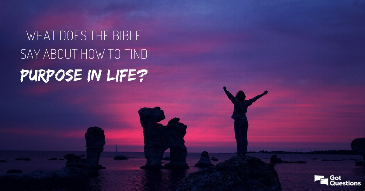 What does the Bible say about how to find purpose in life