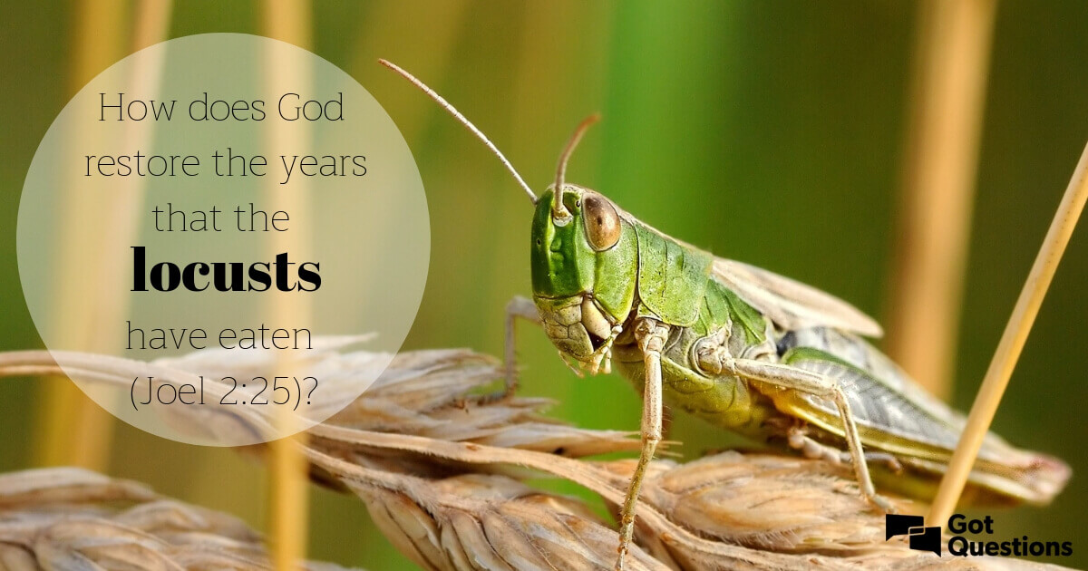 How does God restore the years that the locusts have eaten