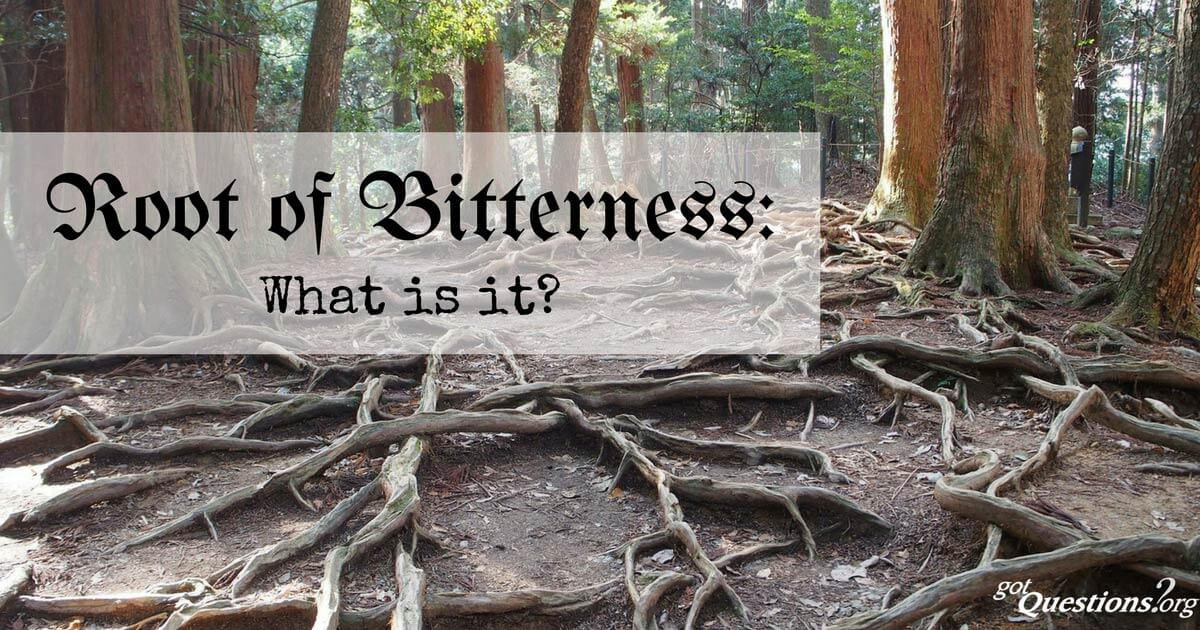 Image result for THE ROOT OF BITTERNESS