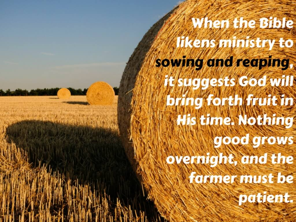 What does the bible say about sowing and reaping buycottarizona Choice Image