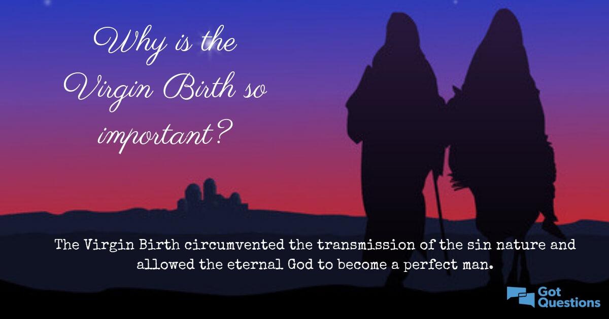 Virgin Birth 5